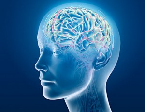 Does-marijuana-cause-brain-damage2