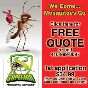 superior-mosquito