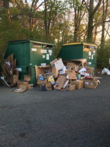 TC-Back-Creek-Recycling-225x300